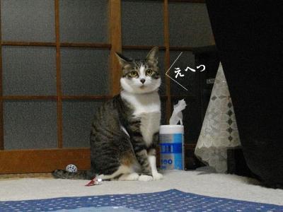 あげ納め04