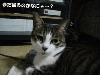 仲良し姉妹03