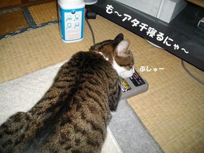 仲良し姉妹04