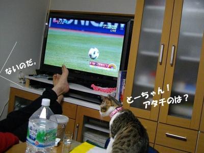 猫三昧03