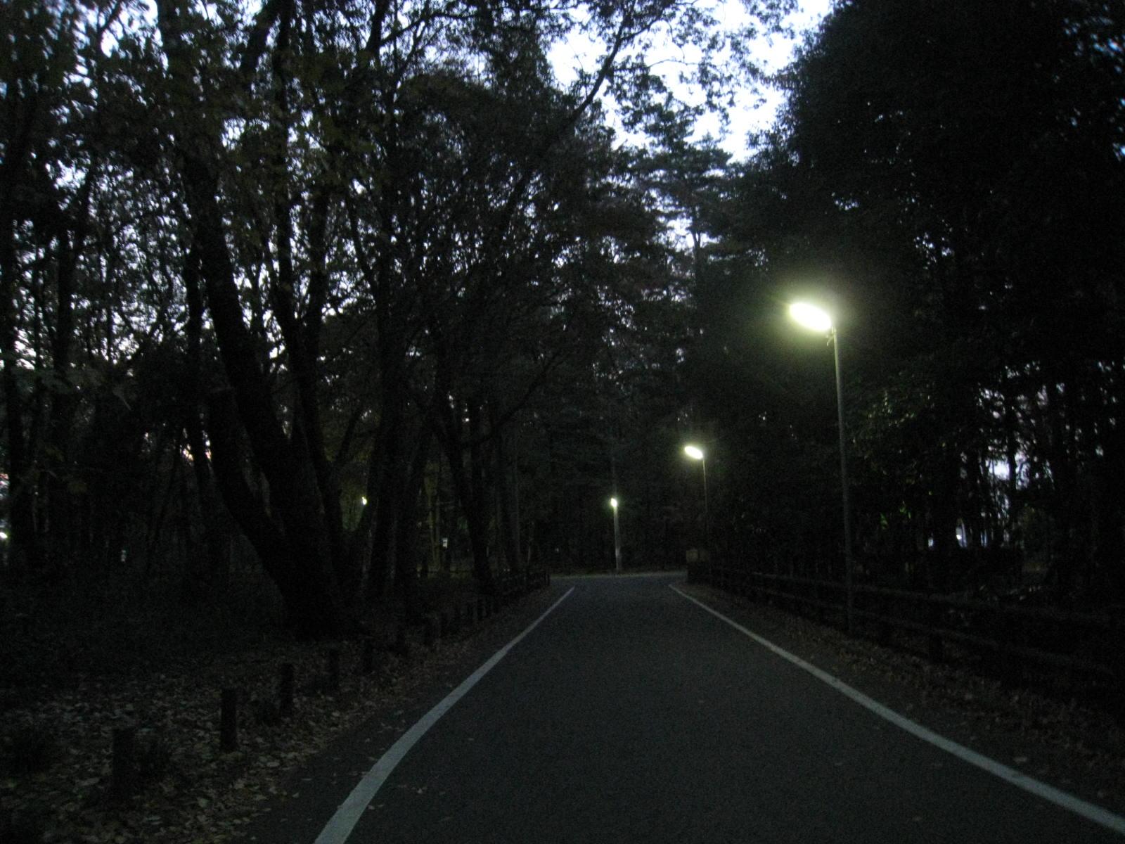 2011.12.1