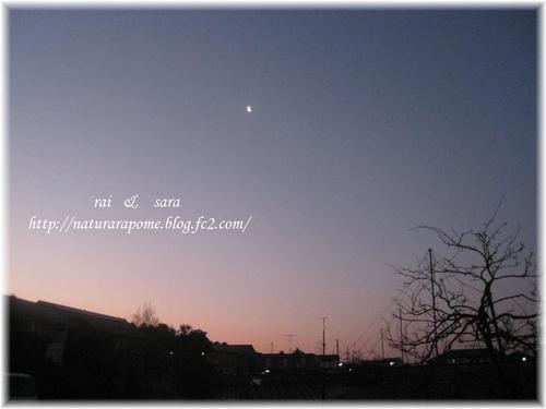 2012.1.19