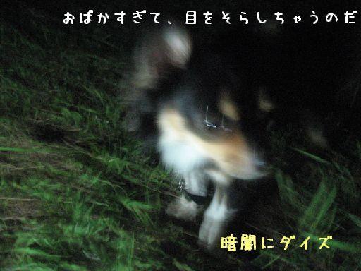 IMG_3292-2.jpg