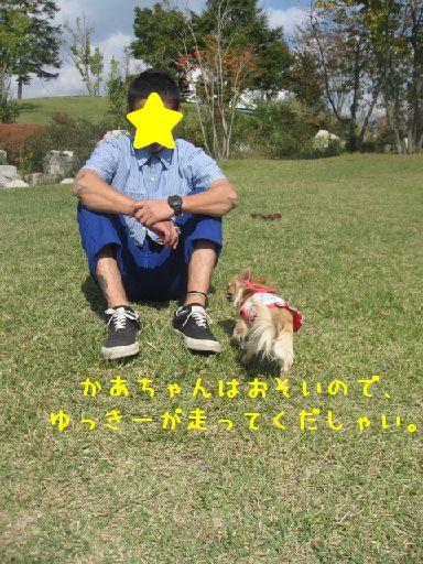 IMG_3965.jpg