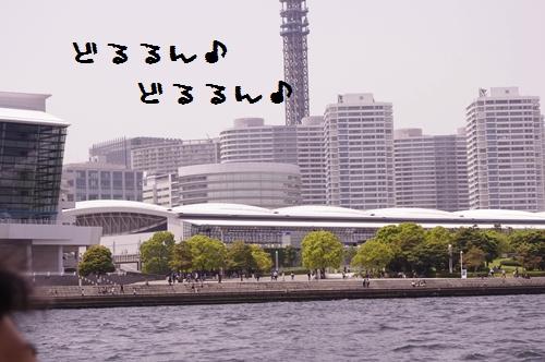 _IGP9162.jpg