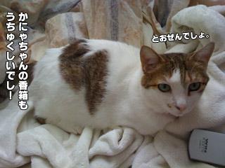20090824_09.jpg