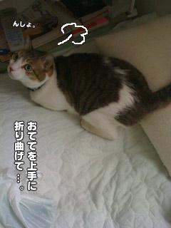 20090824_18.jpg