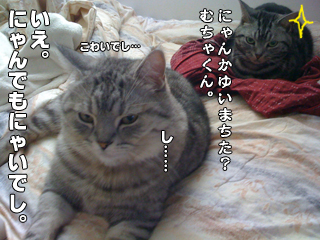 20090825_08.jpg