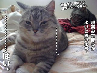 20090826_07.jpg