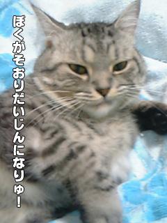 20090828_04.jpg