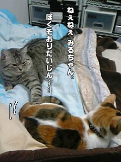 20090828_07.jpg