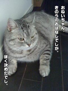 20090829_01.jpg