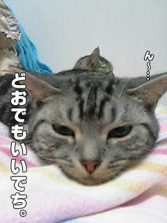 20090829_05.jpg