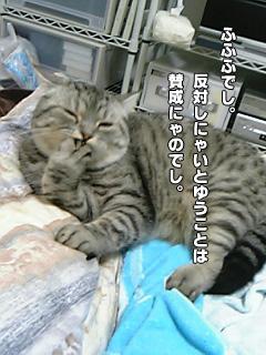 20090829_07.jpg