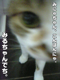 20090830_01.jpg