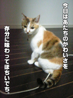 20090830_02.jpg