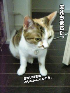 20090830_05.jpg