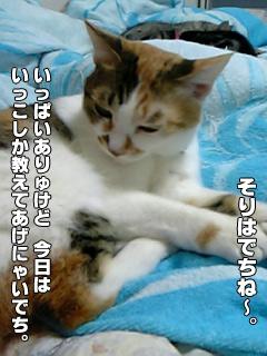 20090831_02.jpg