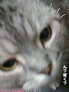 20090901_3.jpg