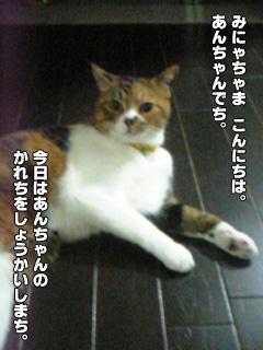 20090902_01.jpg