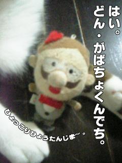 20090902_02.jpg