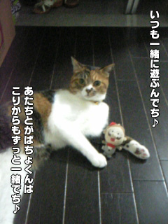 20090902_04.jpg