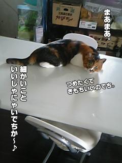 20090903_02.jpg