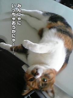 20090909_04.jpg