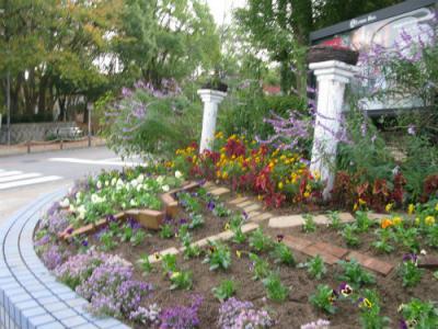 交差点花壇2011年11月13日