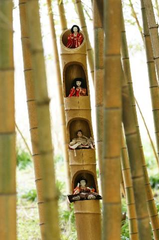 竹林のお雛様2