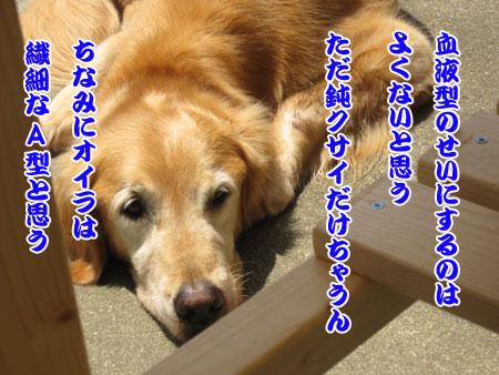 IMG_3383ixy45b.jpg