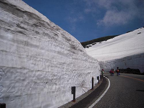 6月の雪の大谷①
