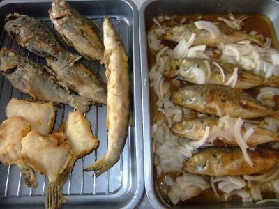 2011.10.30 魚 003