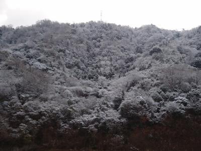 2012.03.12 ナチュラルキッチン 025