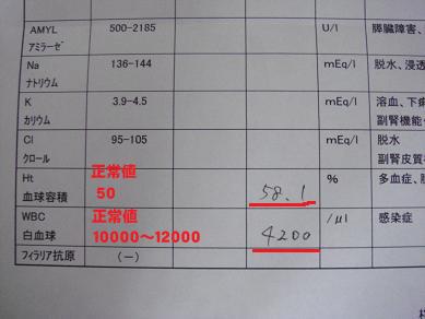 20071229211046.jpg