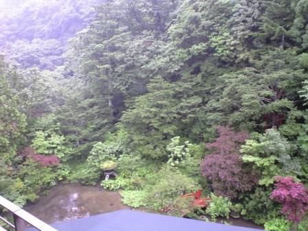 滝乃家 庭園