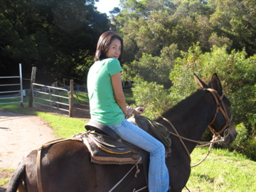 me on the mule Tita