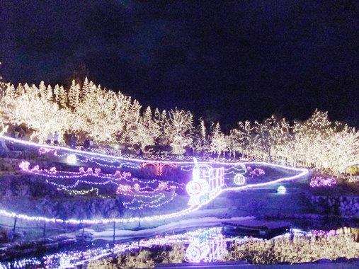 2011124.jpg