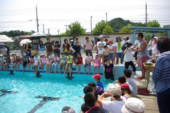 20090830水中生物 2