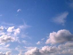 2009681.jpg