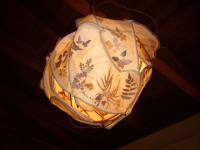 牧野1照明