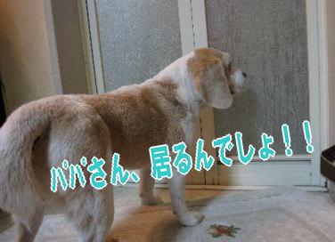 2009・09・110風呂2