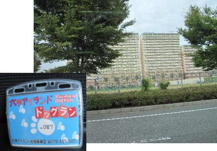 2009・09・14登録カード