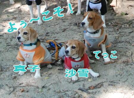 2009・09・19真子家