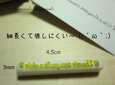 CIMG3113.jpg