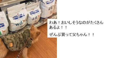 ②food[1]