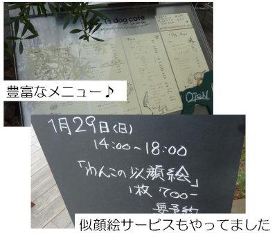 ⑥お店の看板類[1]