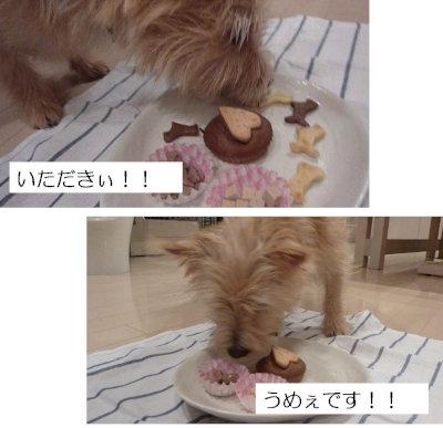 9 いただきぃ!!![1]