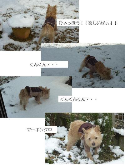 ⑥雪を堪能[1]