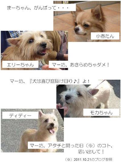 ④みんな![1]